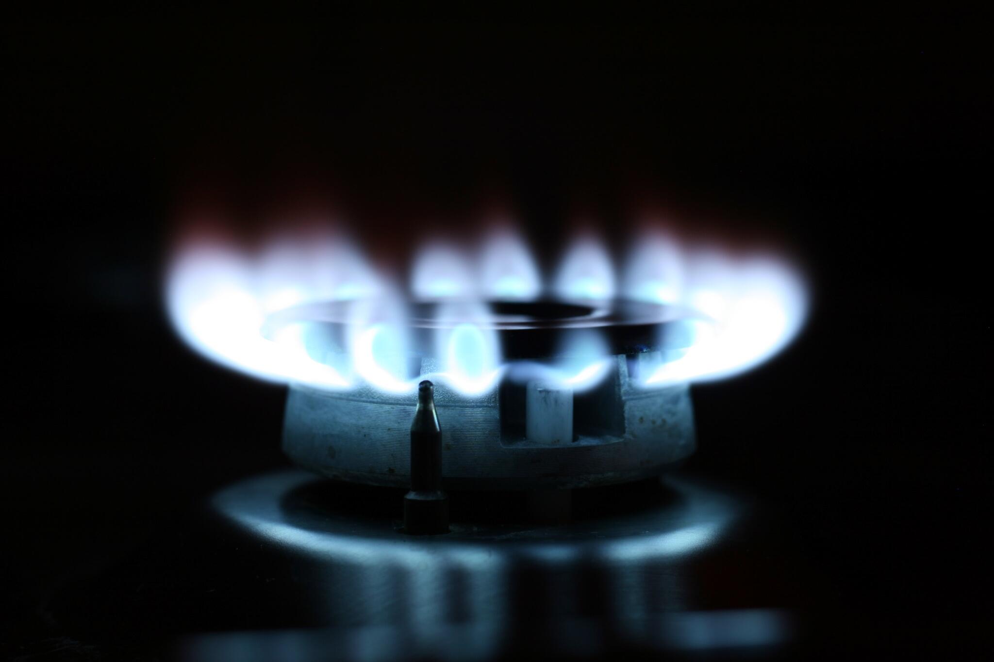 Gas Oder Holzkohlegrill Reinigen : Gasgrill oder kohlegrill wo grillt es sich besser? ⋆ burger ratgeber